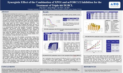 #1380: Synergistic effect of the combination of XPO1 and mTORC1/2 inhibition for the treatment of triple-hit DLBCL